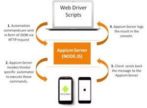 web driver script