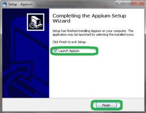 launch appium server